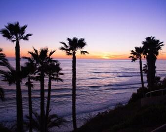 San Diego Beach Photography, Swami's Beach, San Diego Landscape Photography, Beach Landscape, Beach Sunset, Encinitas Photo, Palm Trees