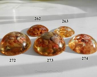 Seashells cabochon Jewelery making supplies Sea terrarium decor beach ocean decoration Cabochon mix handcrafted pastel beige brown sea shell