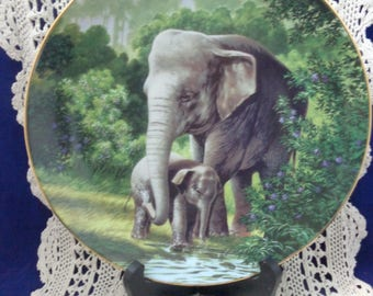 The Asian Elephant Collectible Plate COA, Will Nelson The Endangered Species Plate Collectors, Vintage Plate, Plate Shop, Elephant Decor