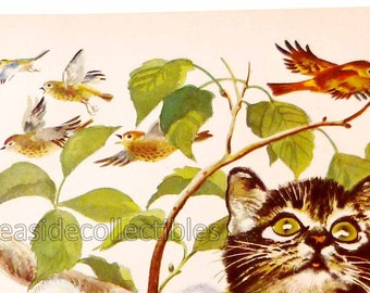 Kitten Chasing Birds Large Full Color 1940s Book Art Illustration by Feodor Stepanovich Rojankovsky