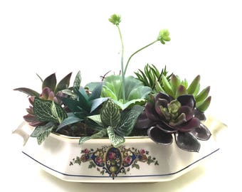 Faux succulent plant floral arrangement vintage elongated octagonal china casserole with swag and gold detail marked S. P. China Sebring 0.