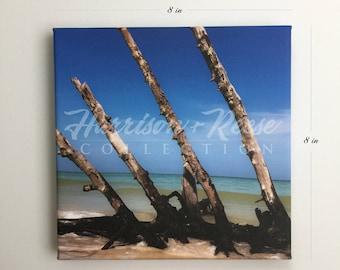 Beautiful Paradise Ocean Shore Canvas Print 8 x 8