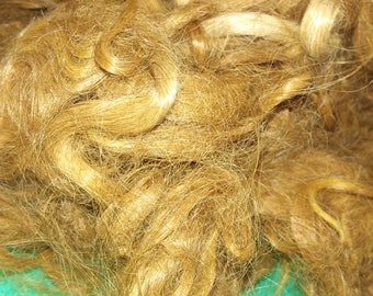 Red brown suri alpaca fleece. Washed by hand in detangling, conditioning, shampoo. Beautiful and glowing color. Yummy!