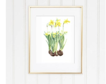 yellow daffodil watercolor, daffodil watercolors, yellow blossom watercolor, spring flowers watercolor, yellow flowers digital print