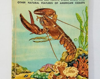 Seashores Golden Nature Guide Book