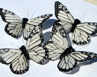 Butterfly Hair clip SOLD INDIVIDUALLY Monarch white with black feather butterfly handmade hair clip by Ziporgiabella  sold individually