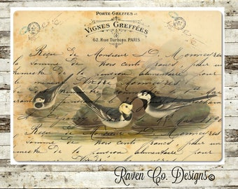 Glass Cutting Board, Birds, Cutting Board, Kitchen Decor, Wedding Gift, Anniversary Gift,Housewarming Gift,Closing Gift
