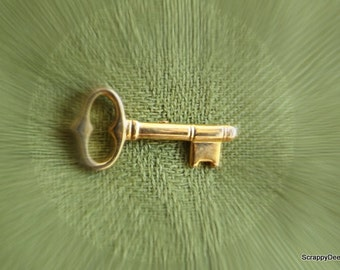 Gold Skeleton Key 10K Tie Tack Fathers Day
