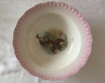 Antique Vintage D E McNicol East Liverpool Bowl Geese Signed Megargel 1920's