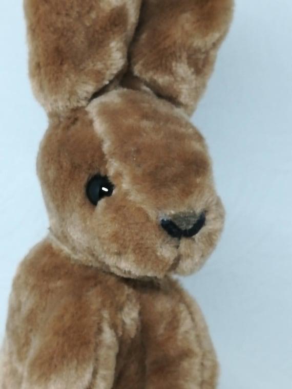 Sirius the Bunny