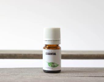 Pine (Black) Essential Oil - Fresh Pine Aromatherapy Oil, Fresh Christmas Tree Scent, Pine Fresh Scent, Pine Tree Scent, Fresh Pine Oil
