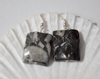 Zebra Stone Earrings | Black and White Earrings | Gemstone Earrings | Zebra Earrings