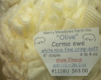 "mmfwool 1158U (1/2) 4 lb 4 oz fleece ""Olive"" Cormo  ewe 4"" staple white nice fine crimp _soft"