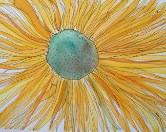 Sunflower x 2