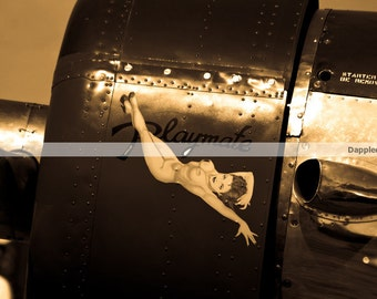 """Photograph of Plane Nose art, """"Playmate"""" plane photography"""