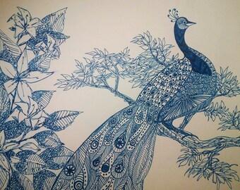 Bird Ink Drawing
