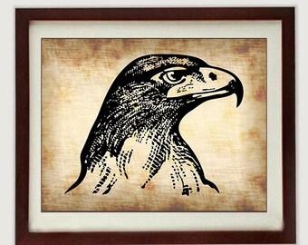 Tête d'aigle téléchargement instantané noire Style parchemin imprimable imprimer Wall Art Decor oiseau animaux sauvages dessin Vintage