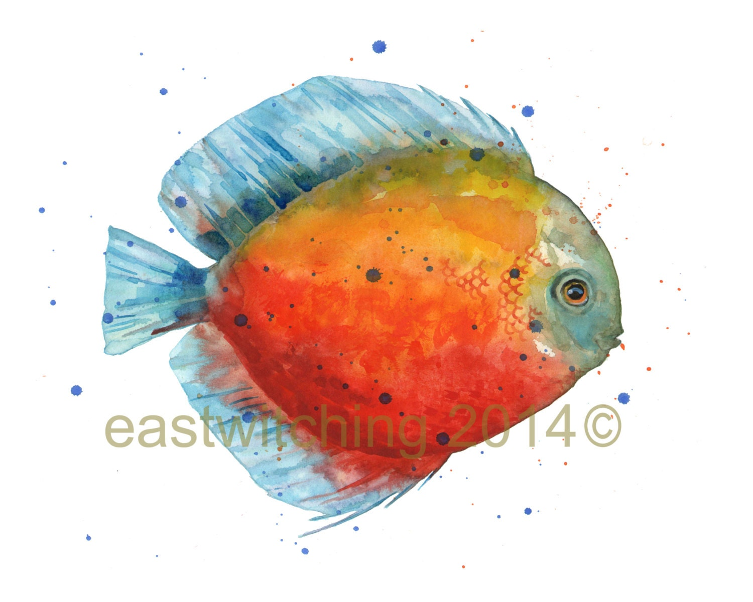 DISCUS FISH Print Tropical fish freshwater fish colourful
