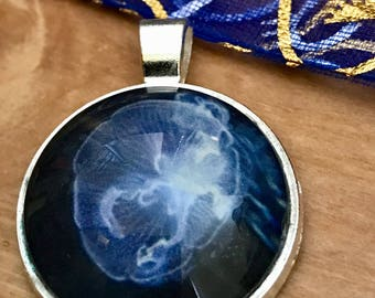 Jellyfish Pendant - Photo