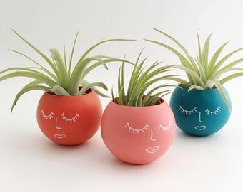 Mini Chalkboard Planters