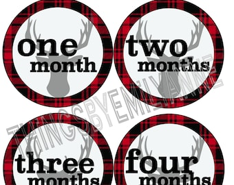 Instant Download Baby Milestone Stickers, Baby Month Stickers, 12 Growth +BONUS Bodysuit Stickers, Monthly Stickers, Red Plaid Deer