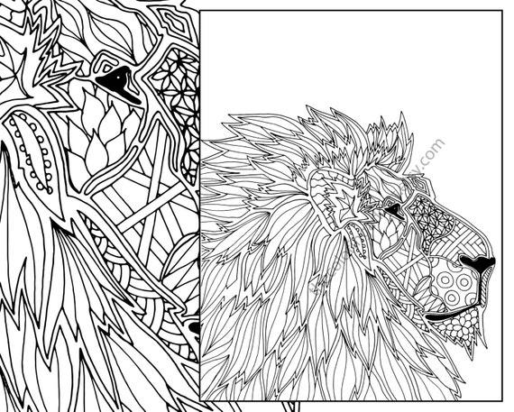 Animal Coloring Page Adult Digital Lion