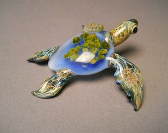 Blue Sea Turtle with Anemone  inside the sea turtle shell