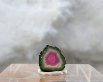 4.55 ct watermelon tourmaline slice from Kunar, Afghanistan C11