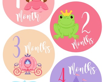 Monthly Baby Stickers - Fairytale Princess - Baby Girl - Photo Prop - Nursery Decor - New Baby