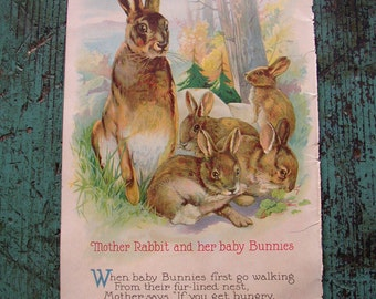 VINTAGE CHILDS BOOK PAGE..1927..BABY ANIMALS .. BIRDS CHARMING