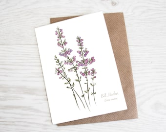 Bell Heather, A6 Botanical Wildflower Greeting Card