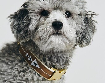 Brown arrow dog collar, adjustable, cotton webbing, brass buckle