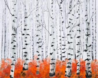 Elegant Birch Trees