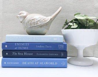 Blue Books for Shelf Decor, Blue Decor, Modern Decor