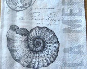 Seashell paper towel