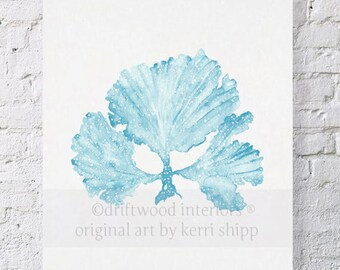 Seaweed II in French Blue - NEW colour