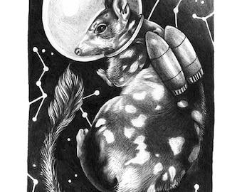 northern quoll // extinct animal astronauts // art print