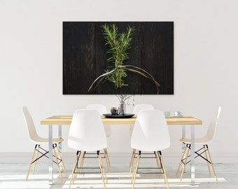 rosemary // food photography print // kitchen decor // dining room // canvas art // canvas print // rustic farmhouse wall art