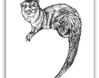 Otter Drawing, Pen and Ink, Otter print, black and white, woodland animal, river otter art