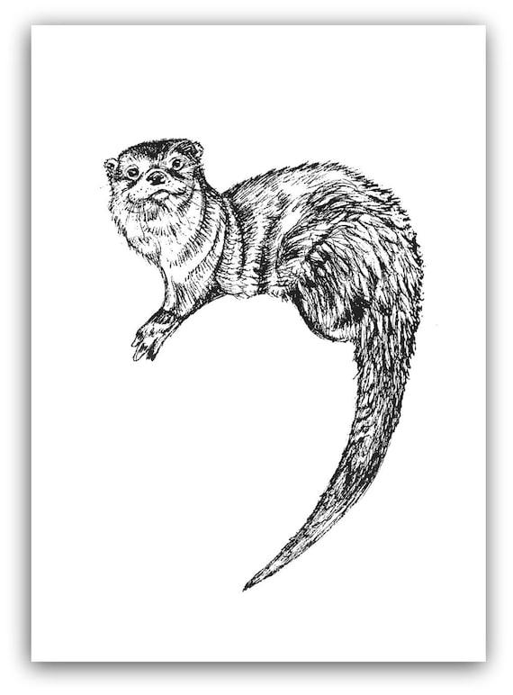 Dibujo de nutria pluma y tinta impresión de nutria blanco y