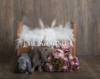 Easter Bunny Floral Digital Backdrop