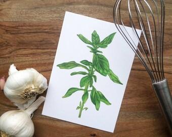 Herb Watercolor Painting Print- Basil