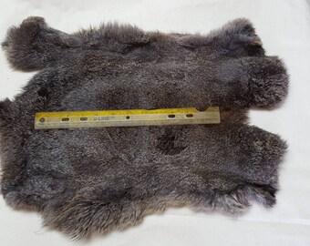 A 56 gold tipped black silky pelt. Fur Rabbit skins, super nice Fur.