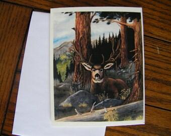 Mule deer art card,  note card, wildlife art card. Deer greeting card, deer art.