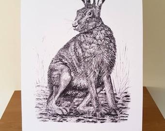 European Hare Giclée Print (Size A3)