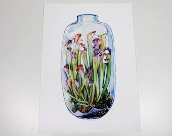 Pitcher Plant in a Glass Terrarium Print