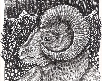 """Sheep Ink Drawing - a whimsical 8 x 10"""" black and white ink pen ART PRINT of a Dall Sheep resting amongst mountainous forest & sunset beauty"""