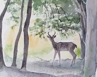 Roe deer art woodland watercolour painting landscape original art, an original one off painting of a roe deer in woodland glade by EdieBrae