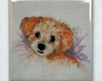 Goldendoodle Puppy Art Square Magnet By Cori Solomon