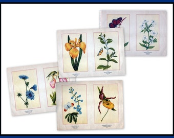 Antique Botanical Illustrations c1895 - Purchase 4 sets of images for 32.00